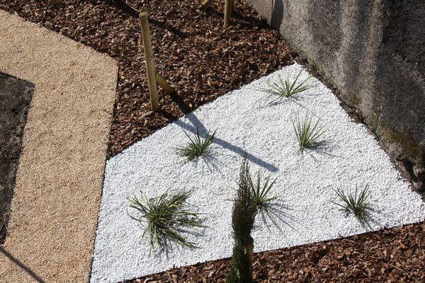 Yucca sur son lit de galets blancs for Galet pour massif